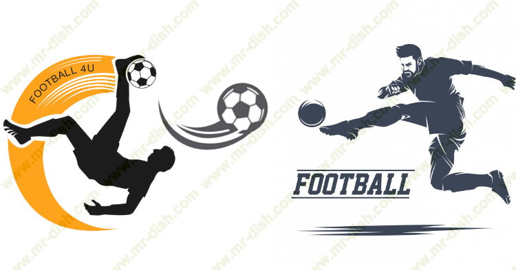Football Live Matches Broadcasting TV Channels